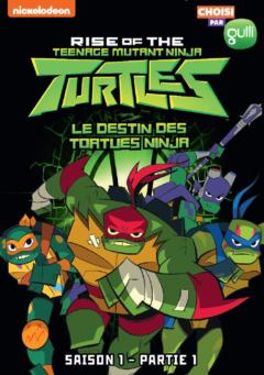 3309450046154_Le Destin des Tortues Ninja_Coffret_2D_DEF